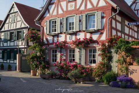 Die schönste Fassade in Trebur