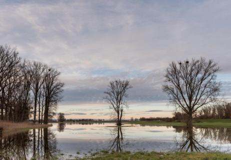 Hochwasser - Flood