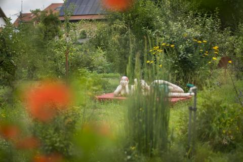 Blick in fremde Gärten