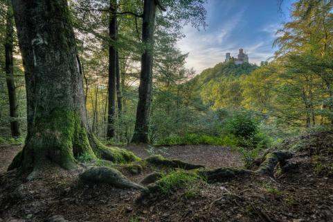 Märchen von Wartburg