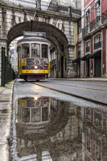 [tram 28]