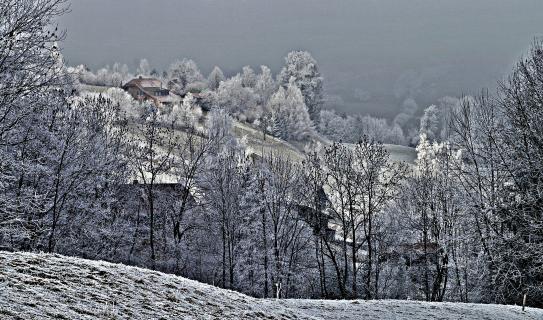 Guggisberg, Schweiz - Landschaft mit Raureif