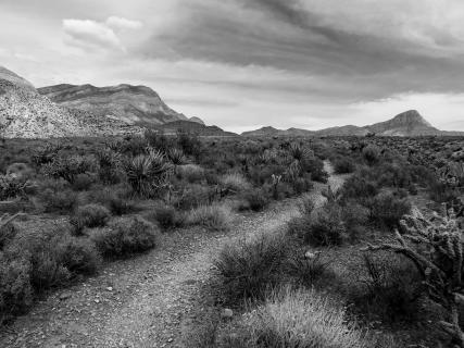 Wüstenwanderweg