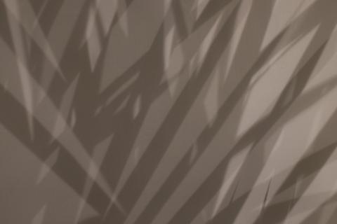Schatten am Vorhang