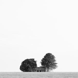 The Cottage In The Field