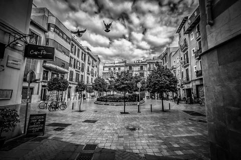 Platz im Winter in Palma de Mallorca