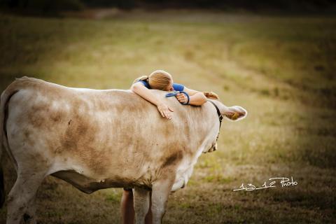 Mehr als nur ein Nutztier