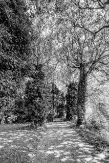 Park Villa Boveri Allee