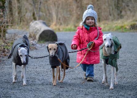 Kathi und die Hunde