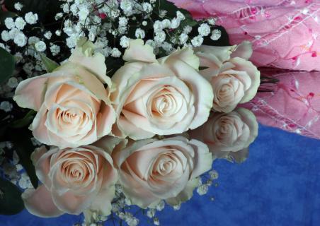 Rosen gespiegelt