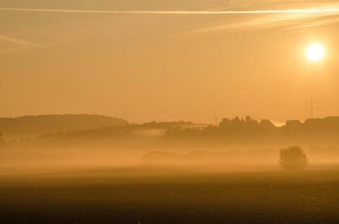 goldener Morgen