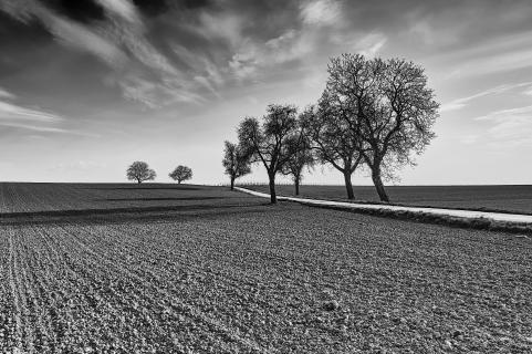 Rural landscapes - The seven under dramatic heaven