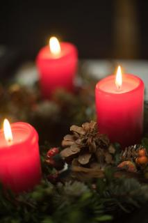 47 Advent Advent_David_Hemetsberger