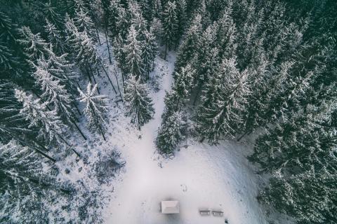52 Fotografieren Sie ein-Winterbild_David_Hemetsberger