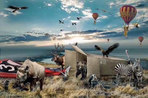 Noahs Reisen