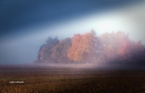 39_Der Herbst, der ist ein Malersmann