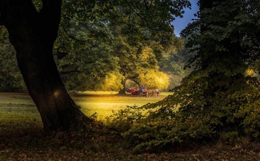 Herbstliche Kutschfahrt2018 001