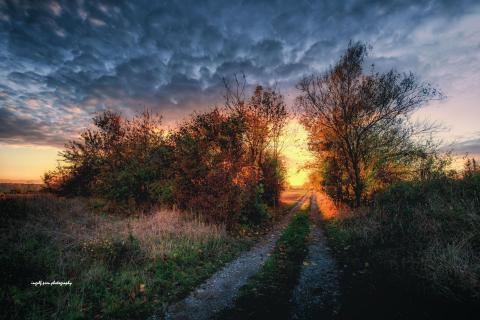 Der Weg in-den-Sonnenuntergang