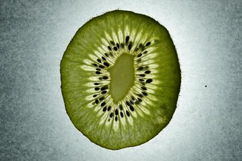 1.5 mm Kiwi