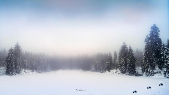 Oderteich Panorama