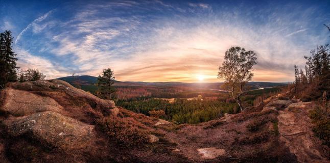 Panoramablick über den Harz
