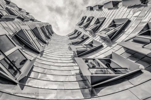 Gehry windows