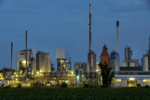 Ölverarbeitung