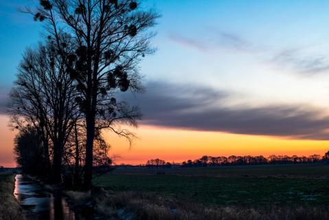 Sonnenaufgang über der Lewitz