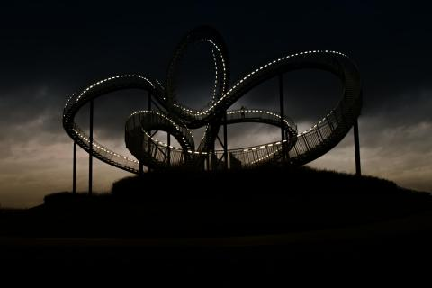 Tiger&Turtle