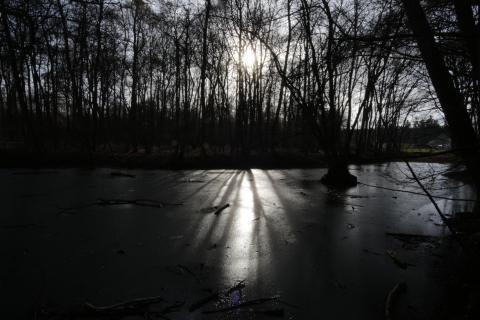 Schatten auf zugeforenen Weiher
