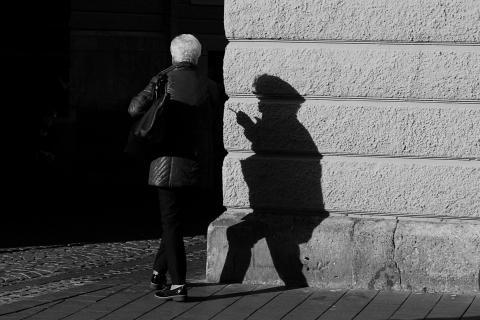 Die Schattenfrau