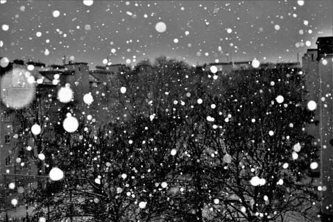 Schneefall im Hof