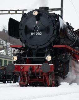 Danpflok Baureihe 01 202