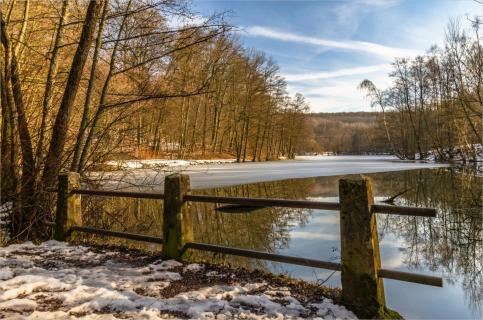 Winter am Fischbachweiher