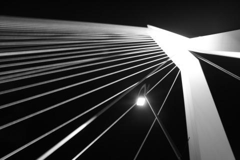 Erasmusbrücke bei Nacht in Schwarz/Weiß