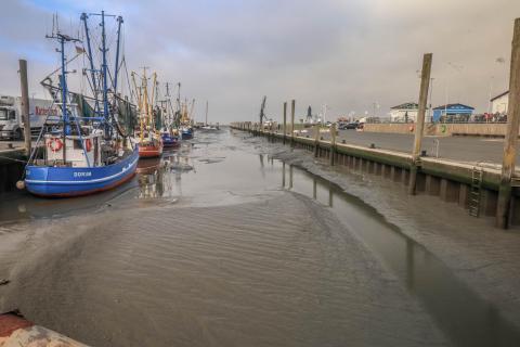 Hafen bei Ebbe