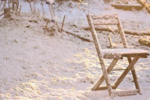 Winter im Garten von Leander Fischer.jpg