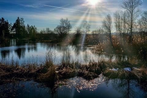 niedermohr haidgau_quellsee