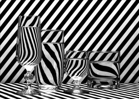 Glas zebra 1