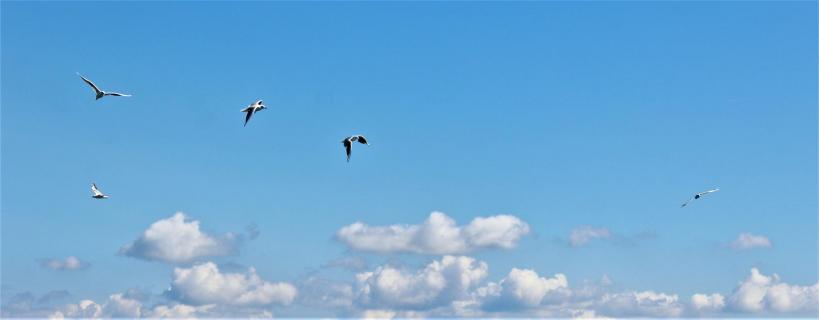 Himmel über Bodensee