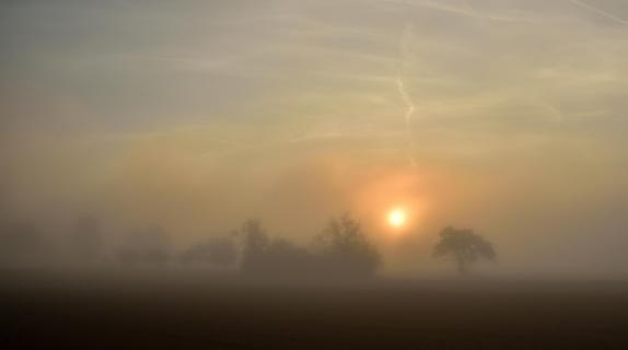 39_Herbst im Nebel_Oliver_Lahrem