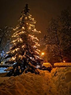 47 advent, advent_Gustav_Sieber