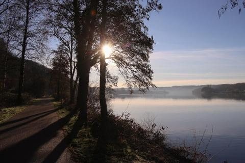 Morgenspaziergang am See