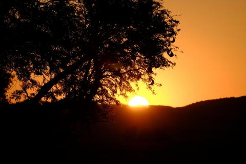 G.F. Sonnenuntergang