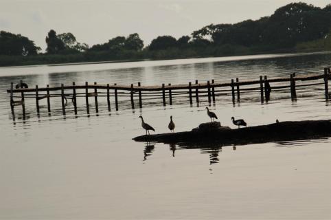 Bulago Island 3