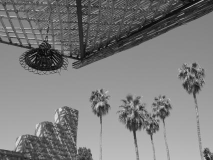 Marrakech rooftop