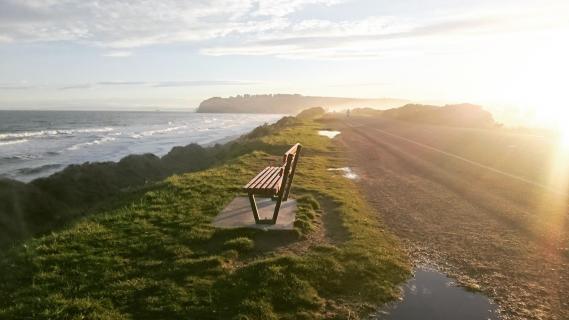 Dunedin NZ Saint Clair