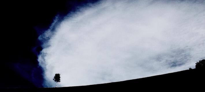 IMG 7316_Baum mitten in der Welt_2