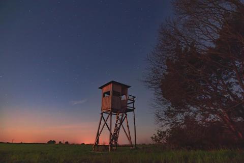 Sternklare Nacht mit Hochsitz eins Jägers