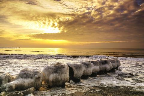 Frostige Bunen im Sonnenuntergang